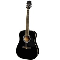 Richwood RD12 Akoestische gitaar